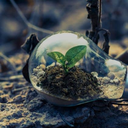 educacion-ambiental